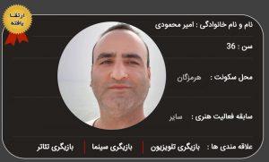 آماده همکاری : امیر محمودی